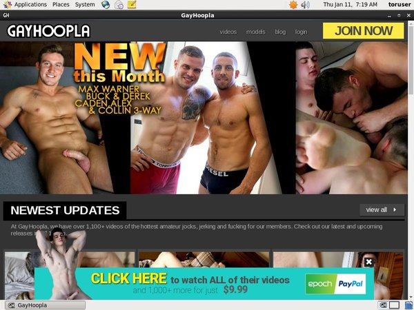 Gayhoopla.com Allow Paypal