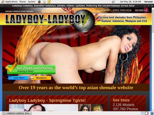Ladyboy Ladyboy Free Trials
