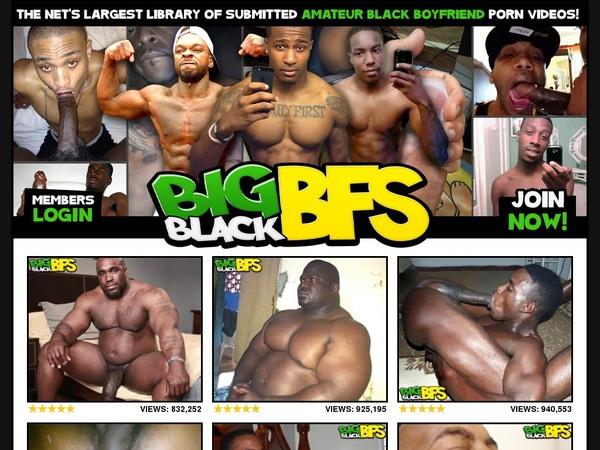 Bigblackbfs Discount Tour