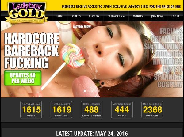 Ladyboy Gold Password Login